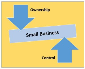Small Business - Ownership and Control