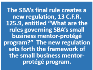 SBA Mentor-Protege Program 07.2016